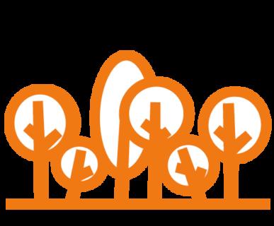 differenziare ingombranti non tagliare alberi
